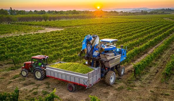Der Einfluss meiner Traktorreifen auf meine Weinbauparzellen